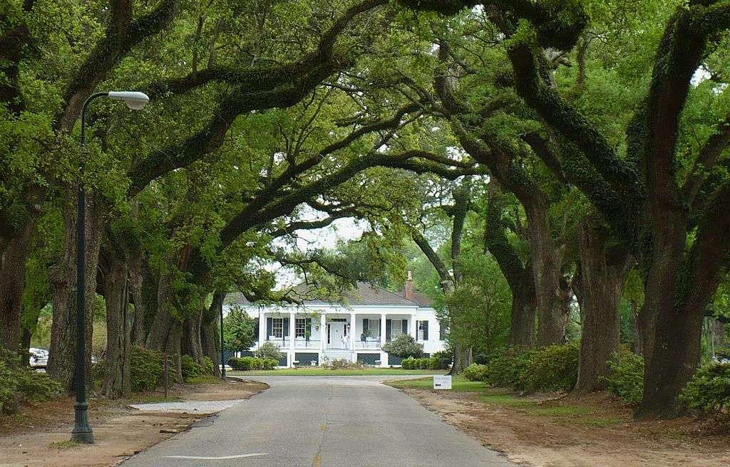 Stewartfield And The Avenue Of The Oaks Springhill College Mobile Al National Register Of Historic Places Old Houses Antebellum Homes