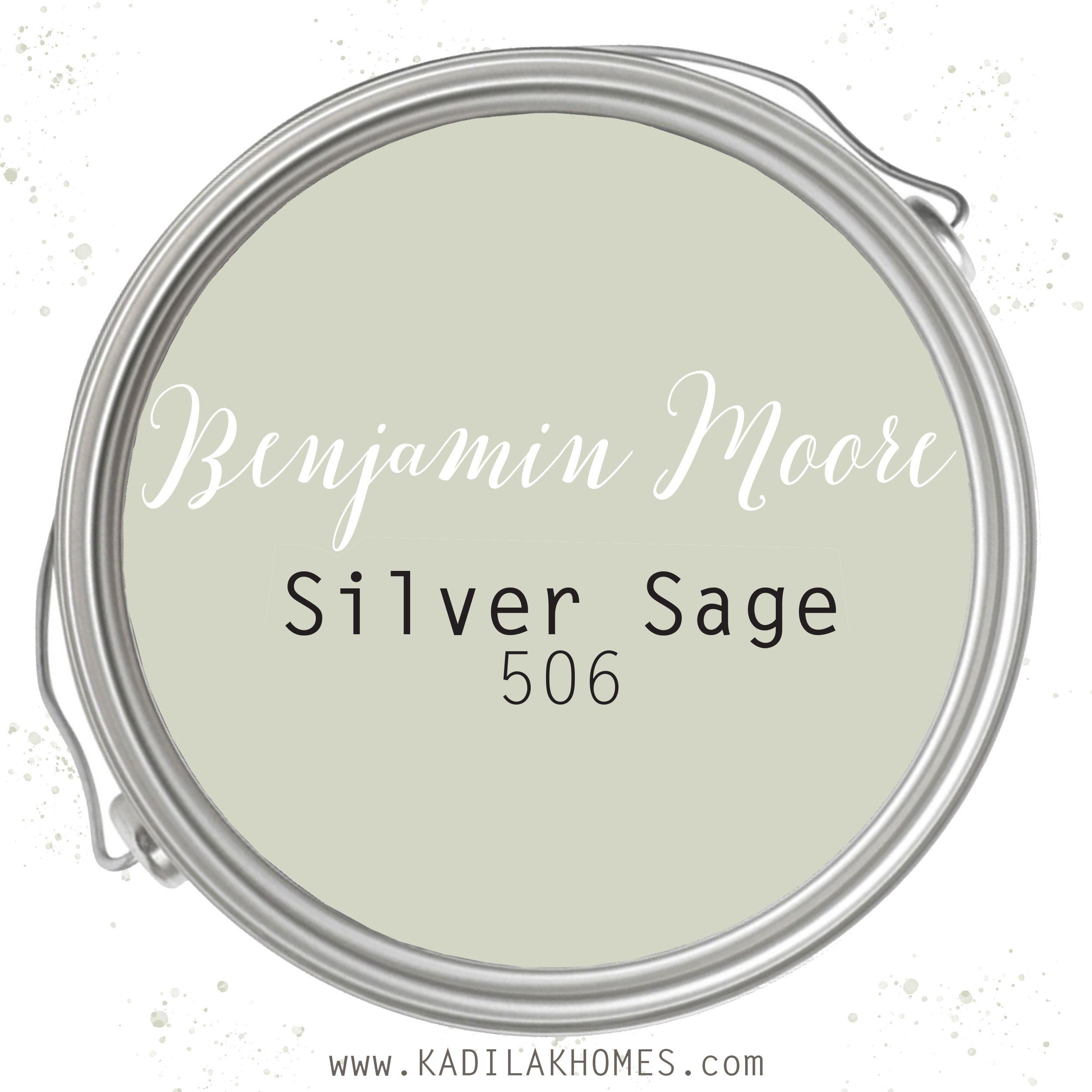 Silver Sage by Benjamin Moore