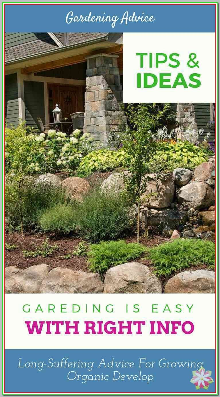 Landscaping Tips: Landscaping Basics For People Without Green Thumbs