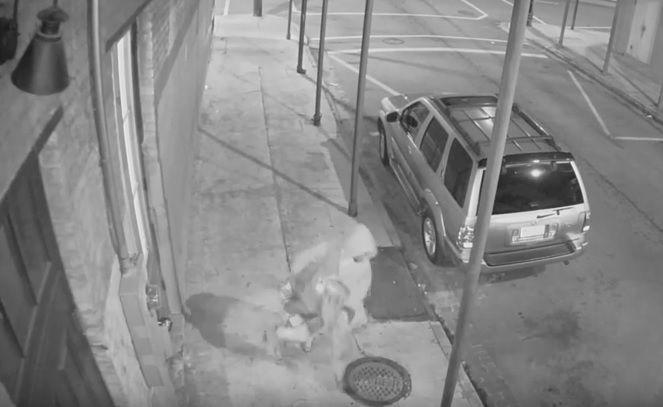 Video: Good Samaritan Shot by Thug Dragging Woman Down Street in New Orleans  Kristinn Taylor Nov 20th, 2015
