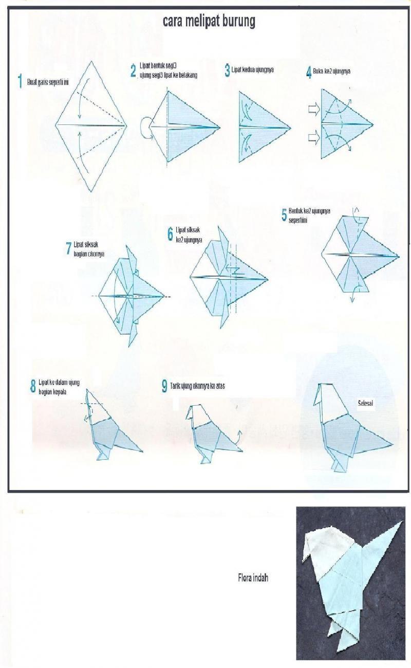 Butung Origami 360185250 Std Jpg 800 1299 Origami Burung Belajar