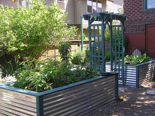 Corrugated metal raised beds. north side yard with reflective ...