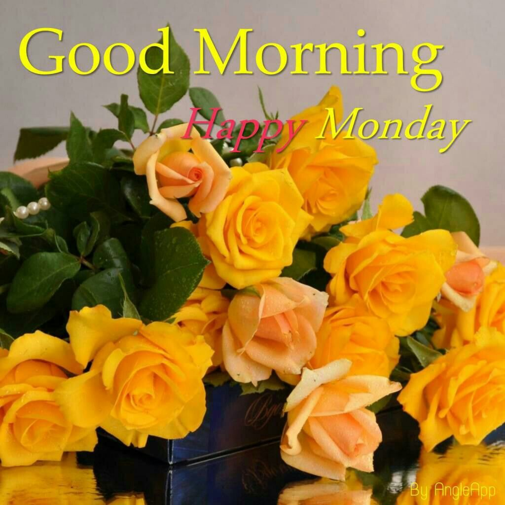 Pin by brenda bester on good morning goodnight day weekend visit izmirmasajfo