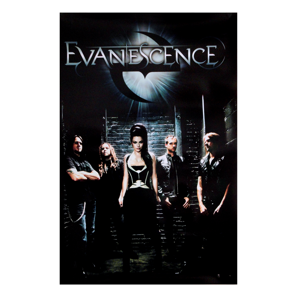 Evanescence Bring me to Life Vinyl SINGLE CANVAS WALL ART Picture Print