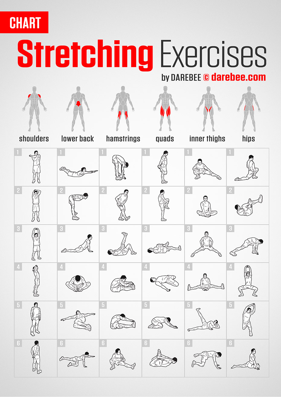 #Chart #Darebee #Exercises #Fitness #stretching #workout Stretching Exercises | Chart by DAREBEE #da...