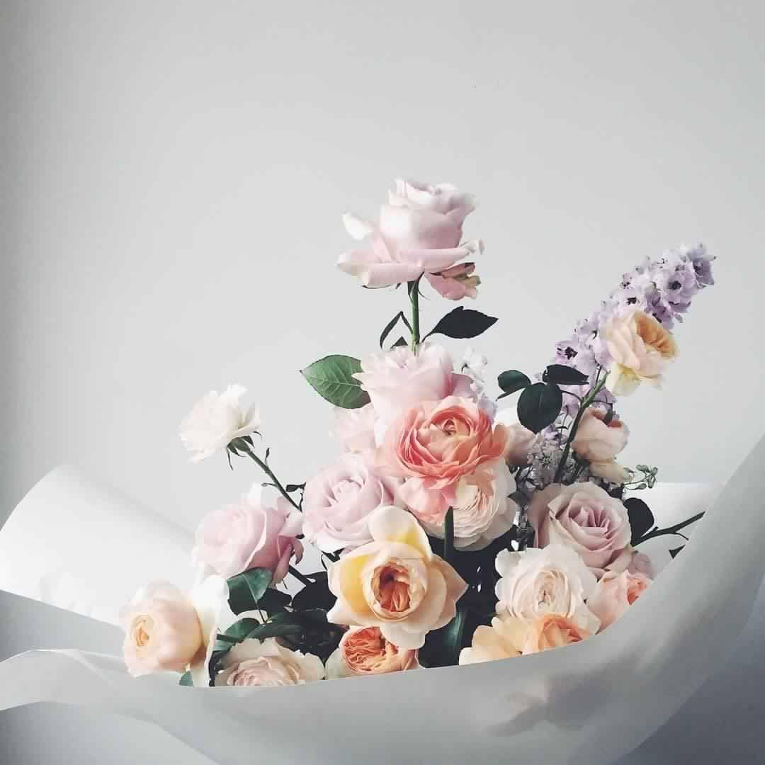 الله م إني أسالك توفيقا في طريقي وراحة في نفسي وتيسيرا لأمري ربي أعوذ بك من شتات الأمر ومس ا لض ر و ضيق الصدر اللهم إني ا Floral Flowers Floral Decor