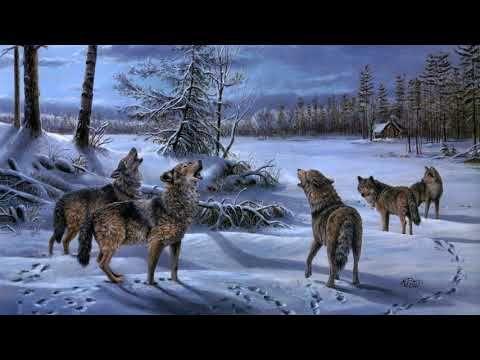 Картинка нарисованная. Mary Pettis, зима, лес, ночь, изба ...
