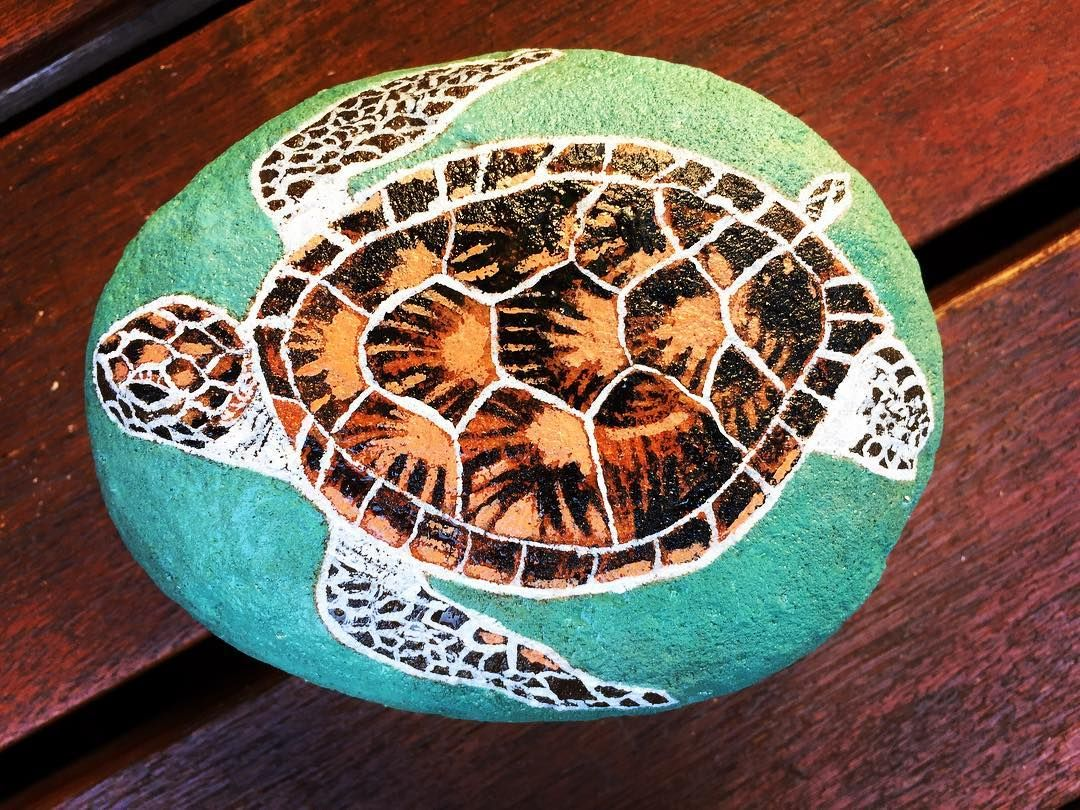Rock Painting Sea Turtle