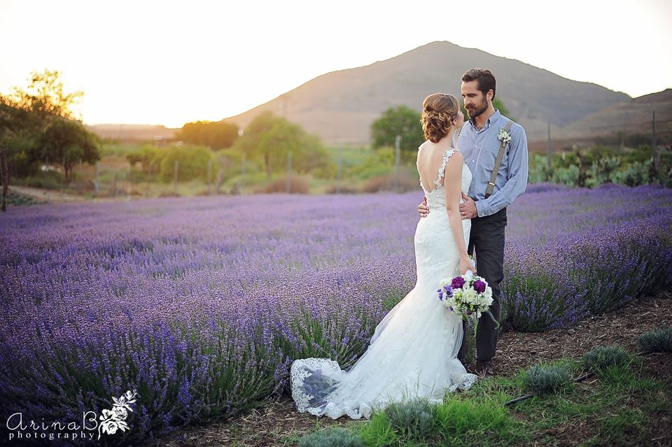 Keys Creek Lavender Farm Arina B Photography San