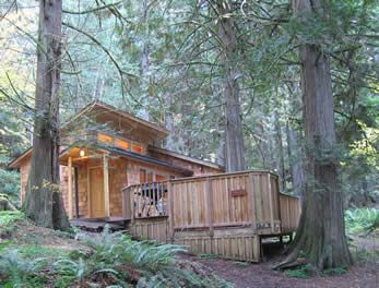Delicieux Deep Forest Cabins   Mt Rainier  Stayed There A Couple Times... LOVE