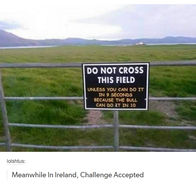 New Funny Signs Meanwhile, in Ireland... Meanwhile, in Ireland... 1