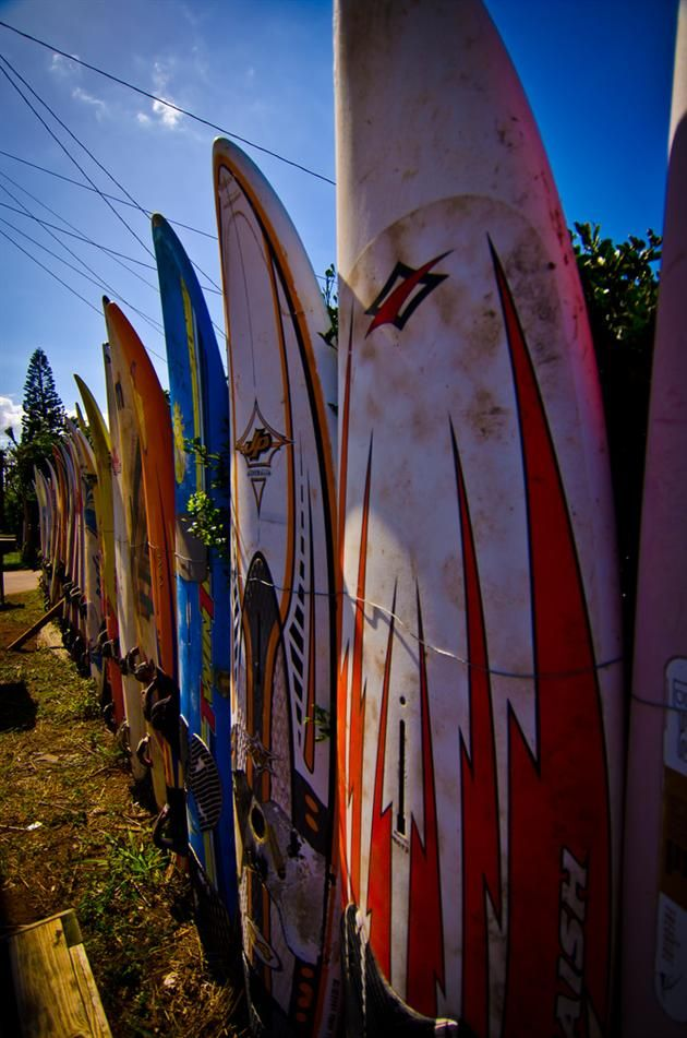 Recycled surfboard fence in Hawaii.