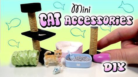 Miniature Cat Accessories Tutorial // DIY Dolls/Dollhouse #dollhouseminiaturetutorials