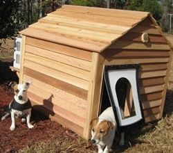 Air Conditioned Dog House Completely Custom Dog House With Ac