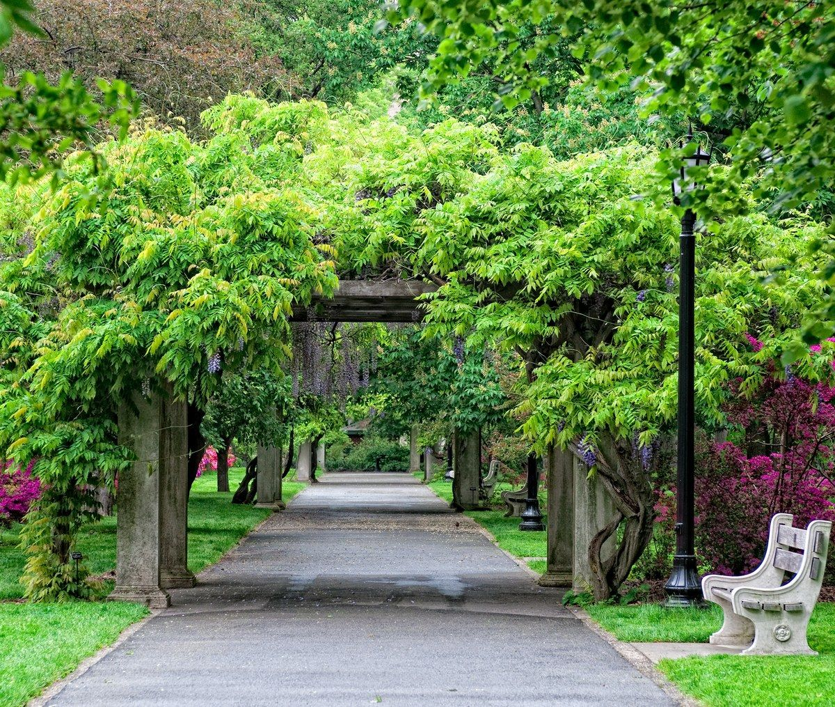 Brooklyn Botanic Garden, SportsOutdoors Review Garden