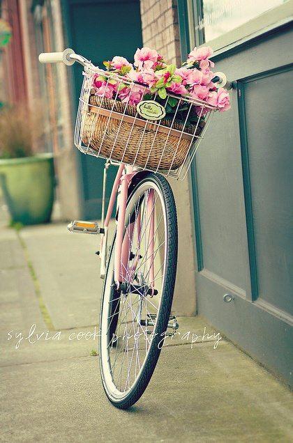 lovely pink fancy schmancy bicycles pinterest bicyclette photo dessin et pink. Black Bedroom Furniture Sets. Home Design Ideas