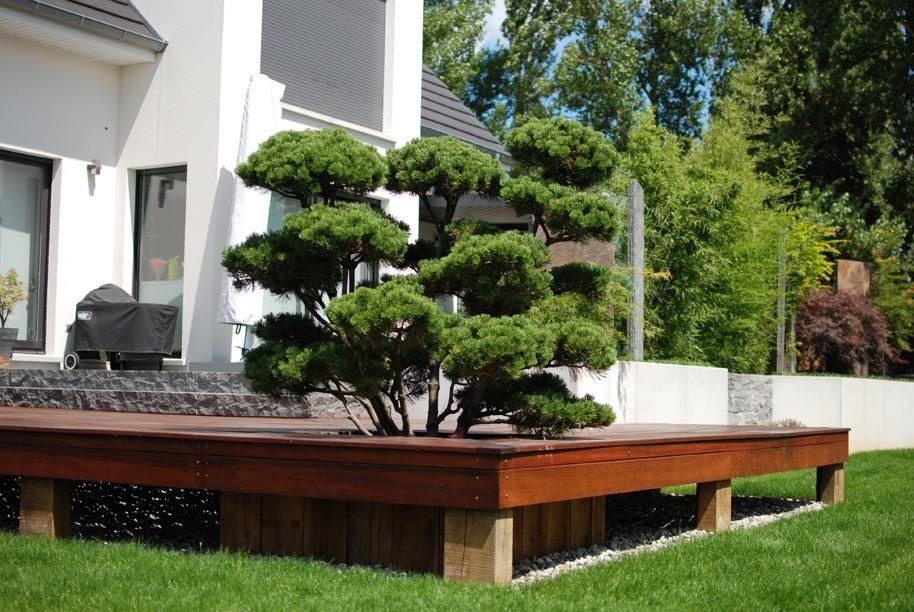Jardin Design Contemporain, Jardin Design Contemporain Inoui 539516 ...