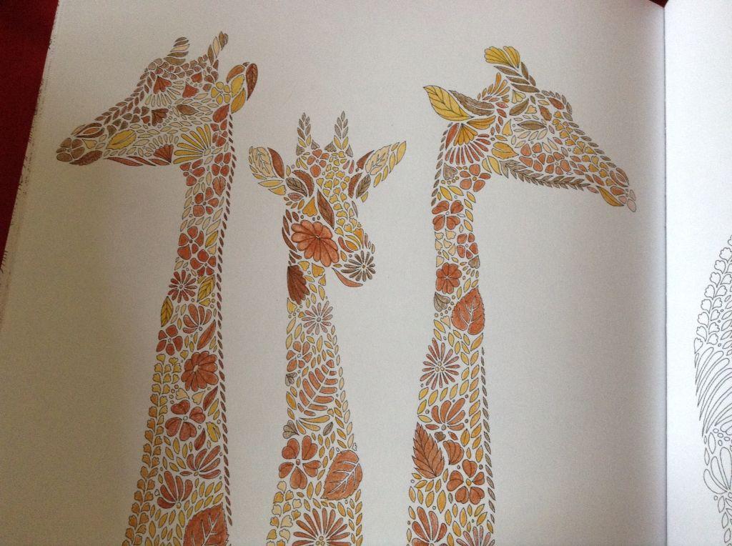 Millie Marotta Adult ColoringColoring BooksColouringBig KidsGiraffeAnimal KingdomDrawing