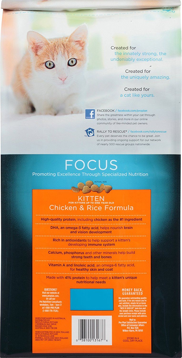 Pro Plan Focus Chicken And Rice Kitten Food You Can Find Out More Details At The Link Of The Image This Is An Affiliate L Kitten Food Dry Cat Food