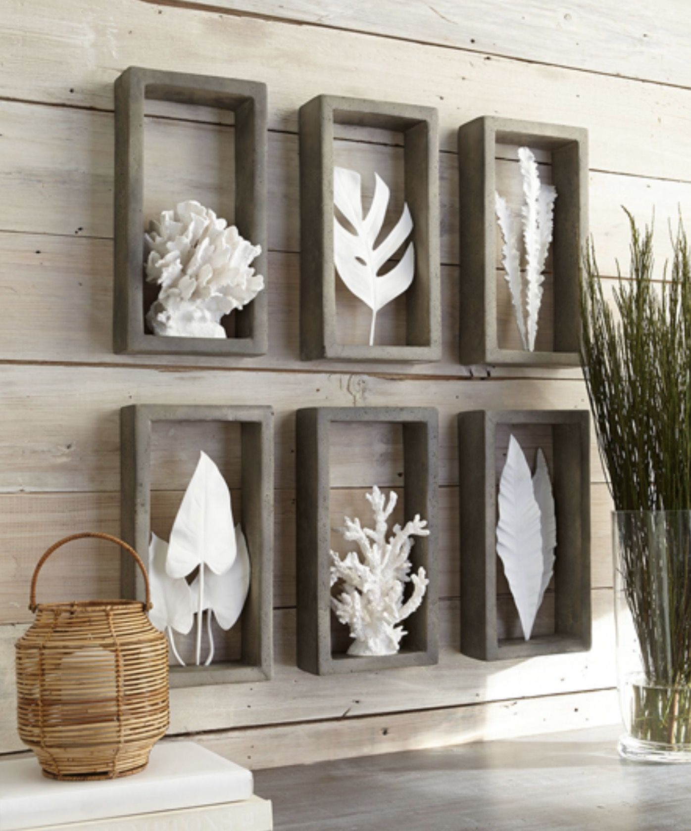 Wall shelves with white accessories create an attractive coastal wall shelves with white accessories create an attractive coastal display adding fantastic texture to the room amipublicfo Images