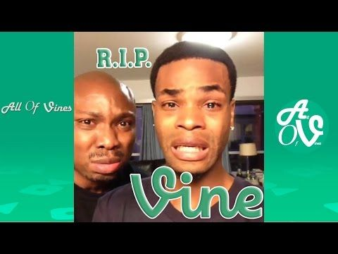 Image of: Try Not Rip Vine Last Funny Vines Ever And Some Viners Paying Their Respect To Vine farewell Vine Youtube Pinterest Rip Vine Last Funny Vines Ever And Some Viners Paying Their