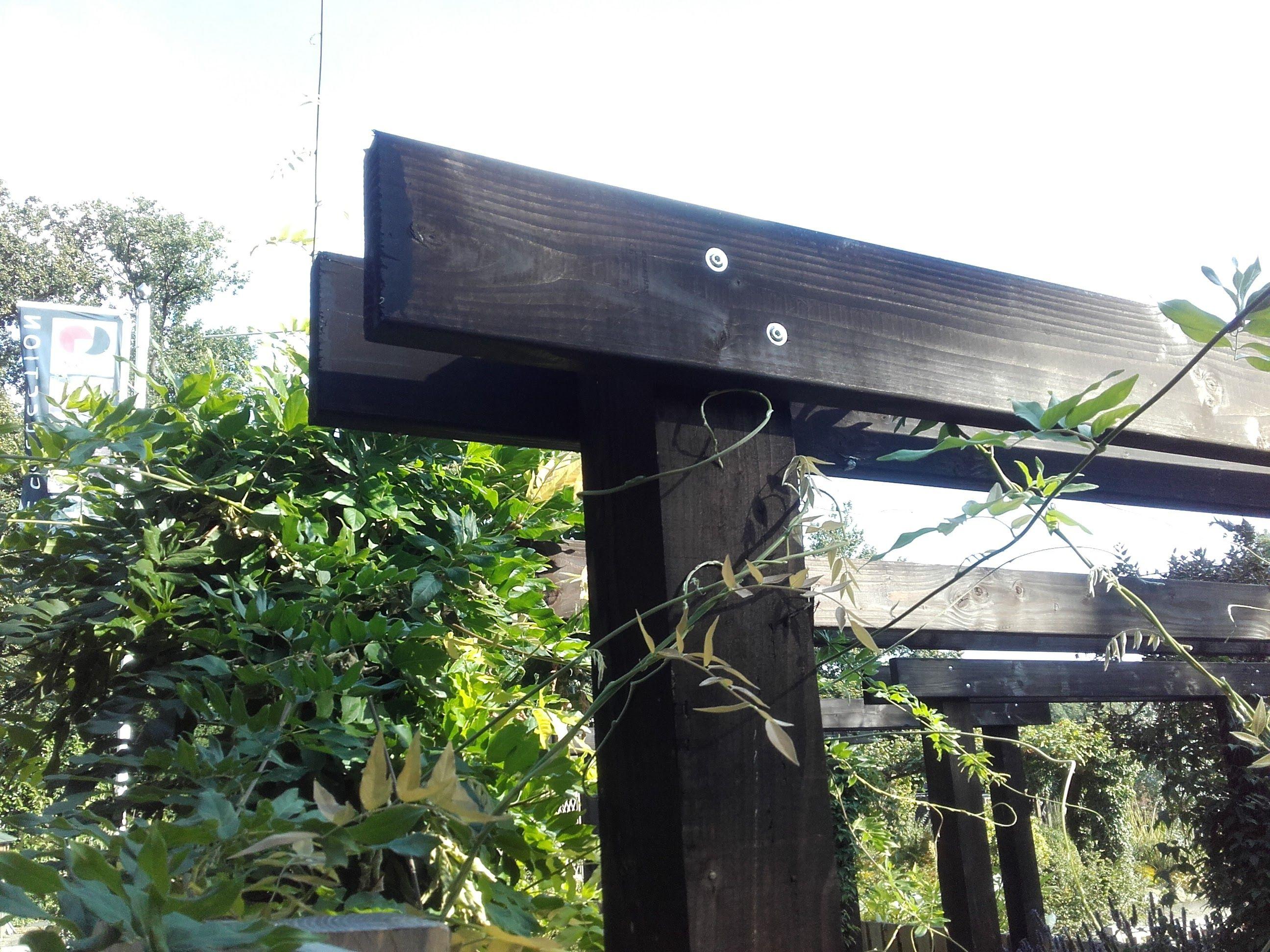 Pergola van doulashout met robuste staanders tuin ideen pinterest