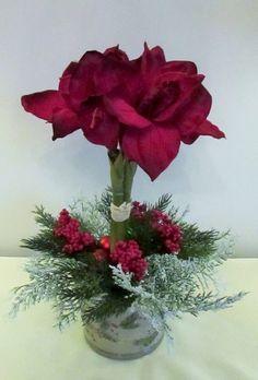 Pin Af Kristen Ballard Pa Amaryllis Juleudsmykning Blomster Juledekorationer