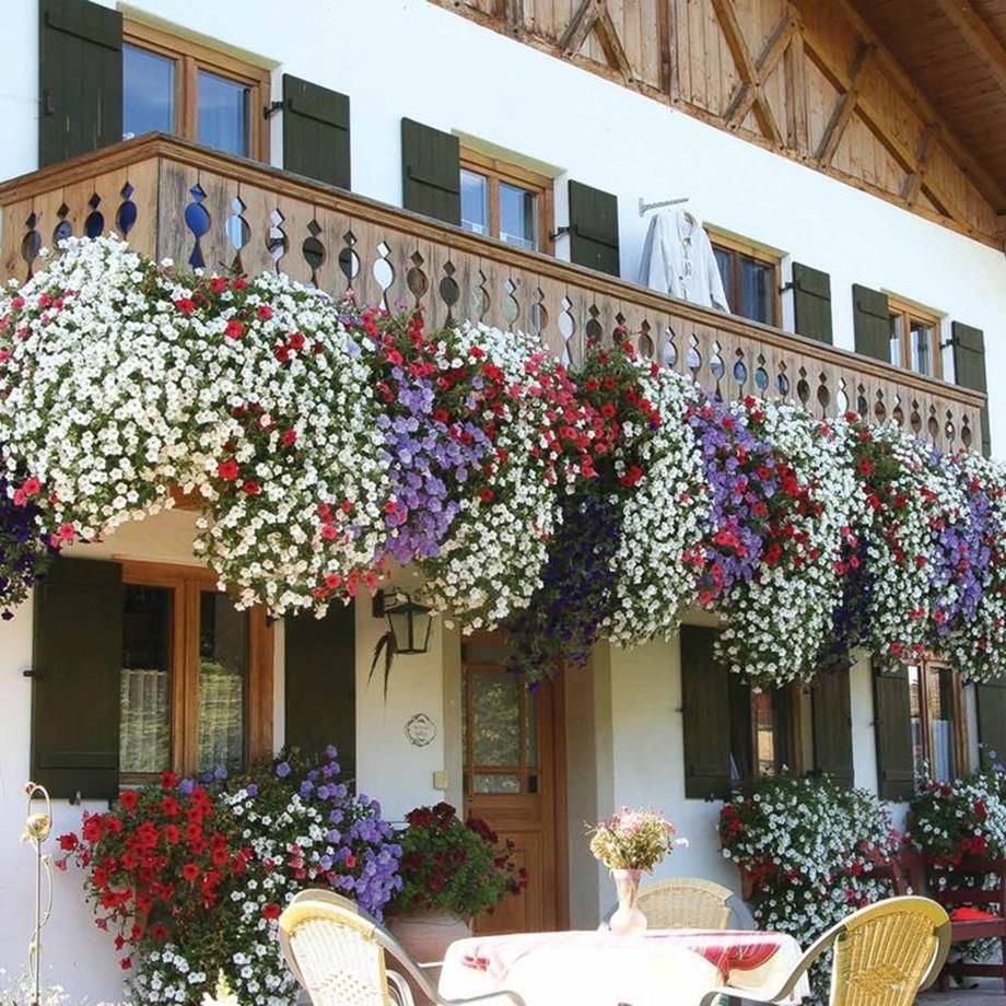 32 Beautiful Ideas Cascading Flowers For Window Boxes