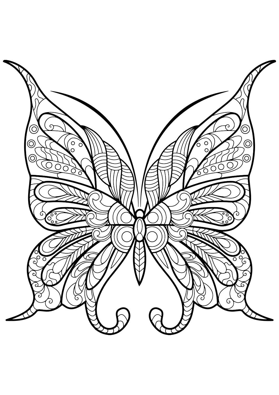 Adult Butterfly Coloring Book | Beautiful butterfly pictures, Stress ...