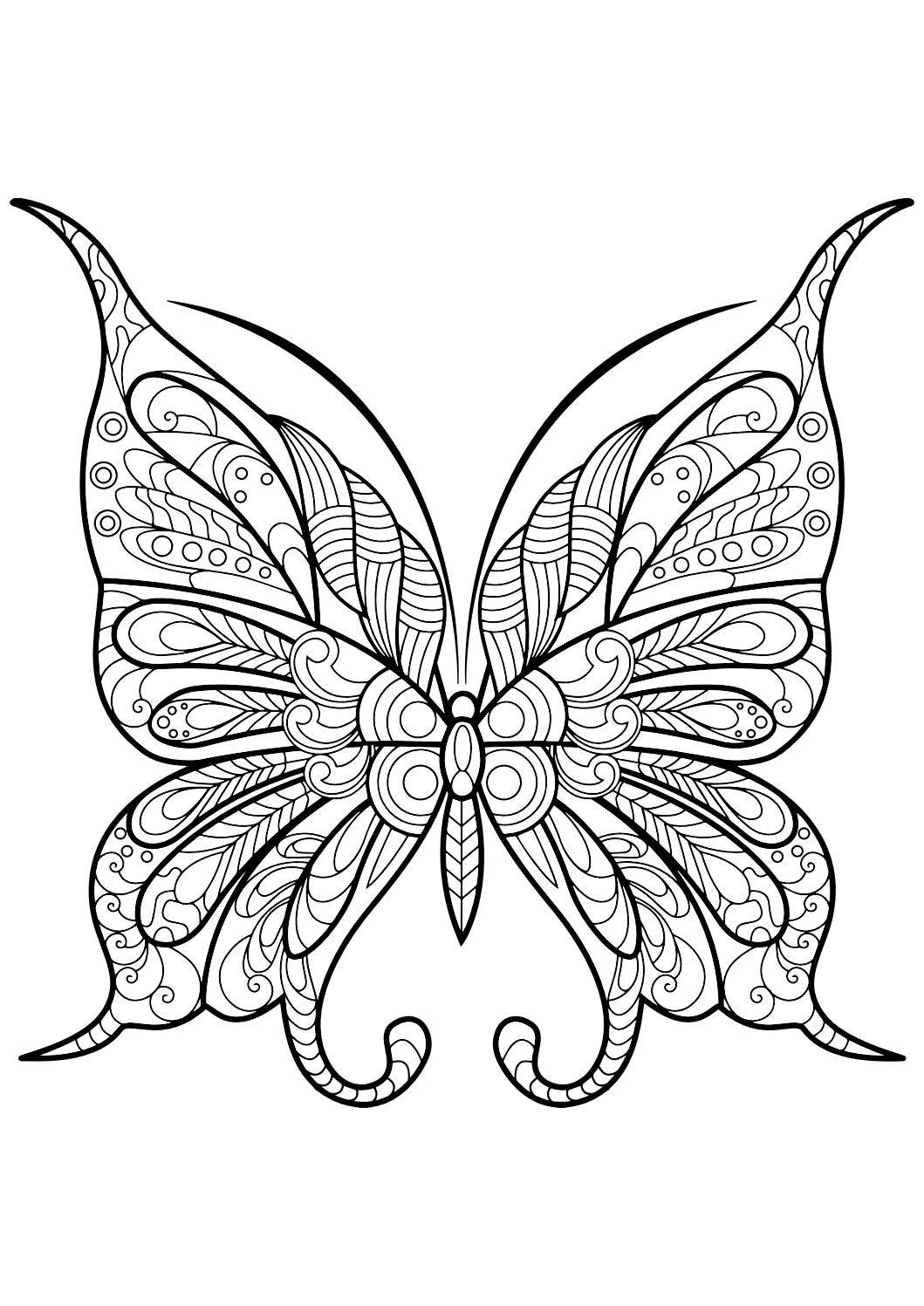 Ausmalbilder Mandala Schmetterling : Adult Butterfly Coloring Book Bilder Zum Ausmalen Ausmalen Und Bilder