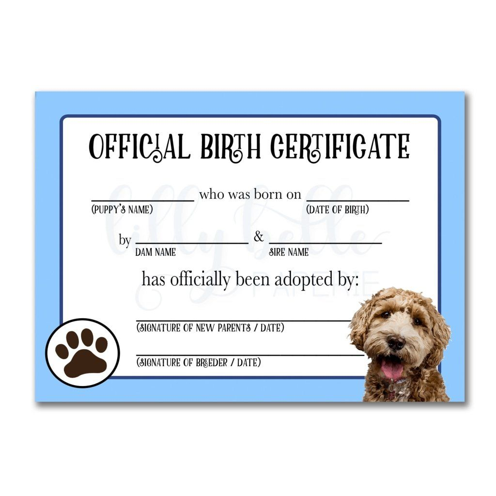 Printable Goldendoodle Birth Certificate Dog Birth Dog Adoption Certificate Pet Adoption Certificate