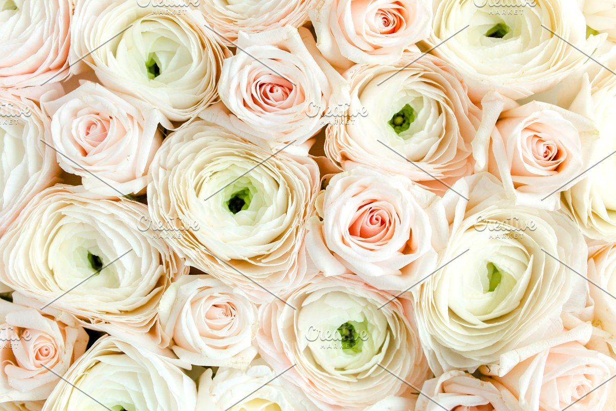 Texture Of Pink Ranunculus Sponsored Paid Roses Flower Close Ranunculus In 2020 Flower Texture Flower Close Up Pink Flowers