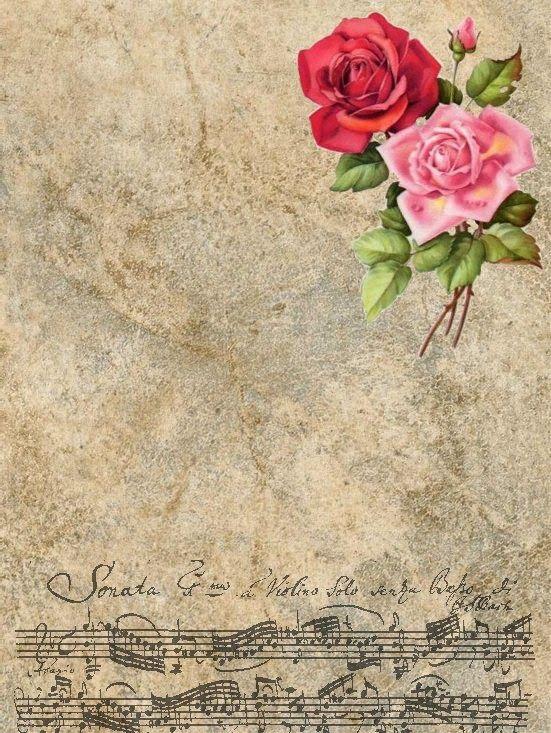 Cartas de amor para los hombres