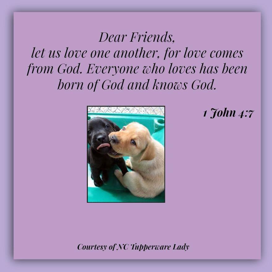 1 John 4:7 #godslove #love
