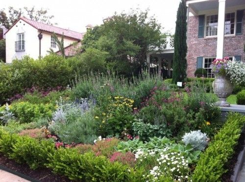 Curb Appeal For A Colonial Home Using Native Texas Plants