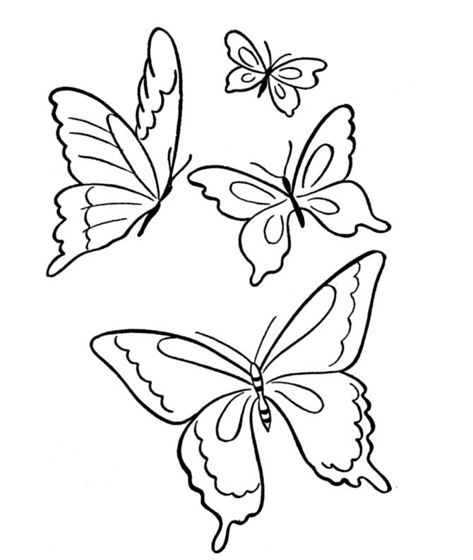 Four Butterfly Is Soft Sand Coloring Page Desenhos Pintar