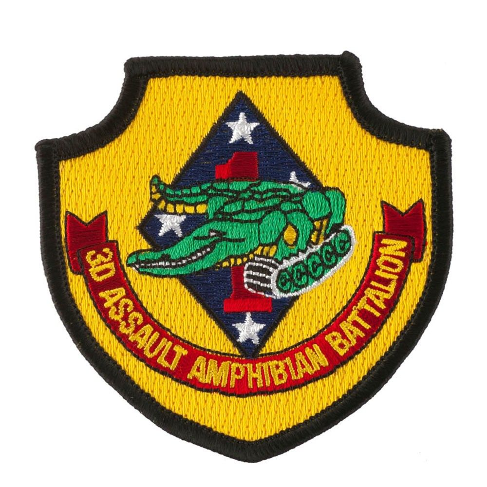 3rd Assault Amphibian Battalion Assorted Marine Patches 3rd