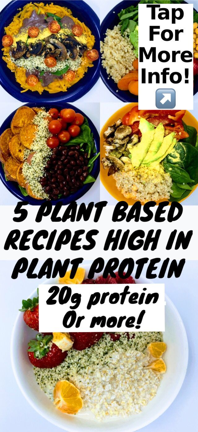 High Plant Protein Recipes Plant Based Diet Recipes For