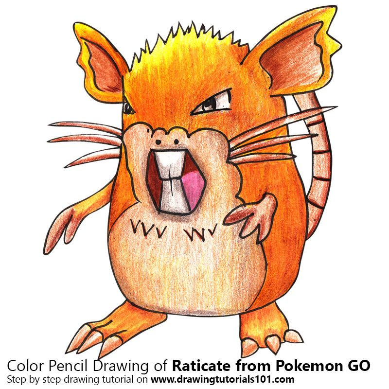 Raticate from Pokemon GO with Color Pencils [Time Lapse]