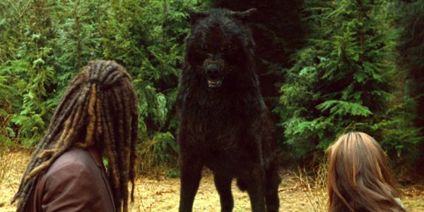 Werewolf Twilight Pack jacob and the pack as ...