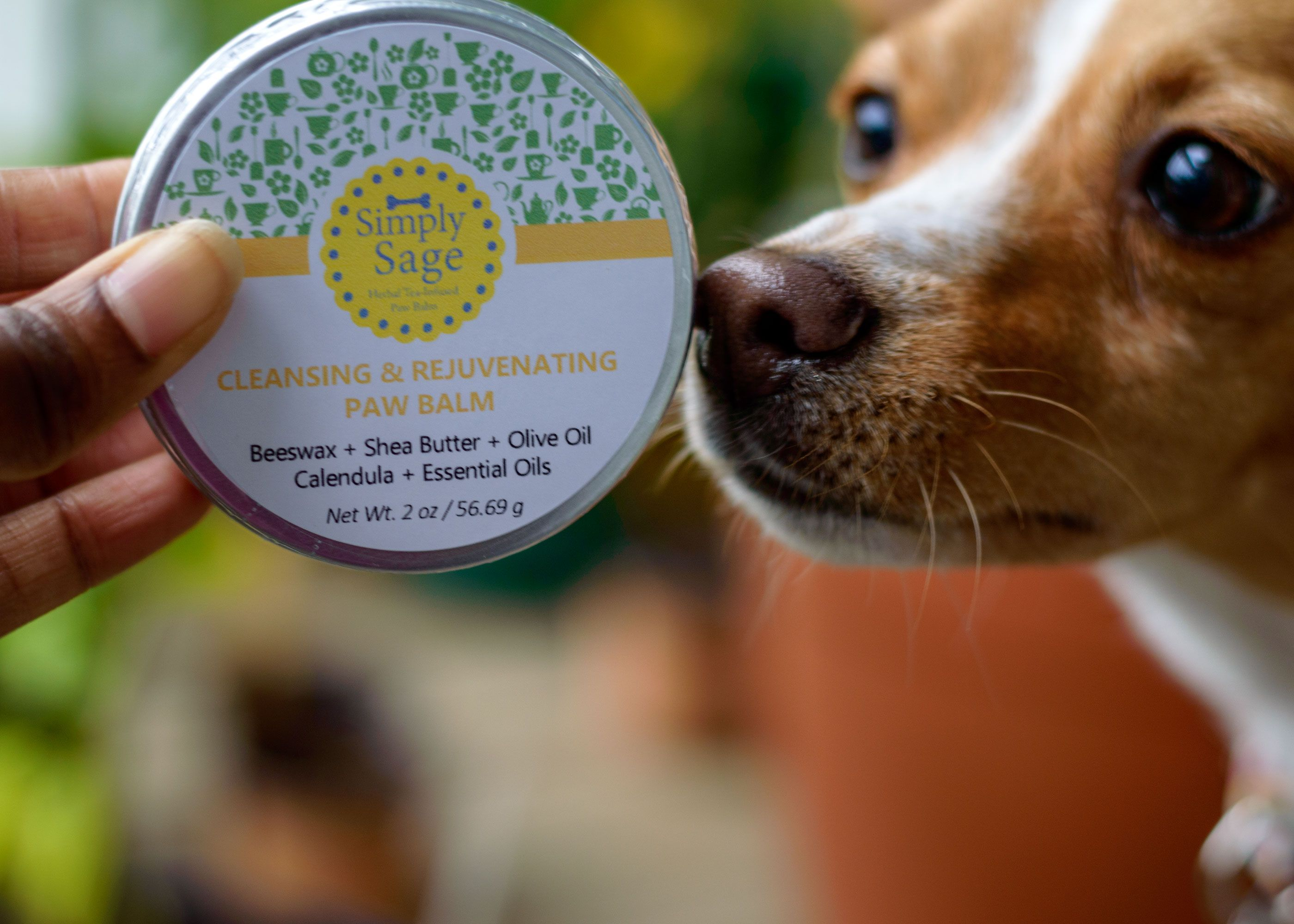 A little paw balm every other day will keep the cracks
