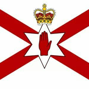 Image result for red hand ulster