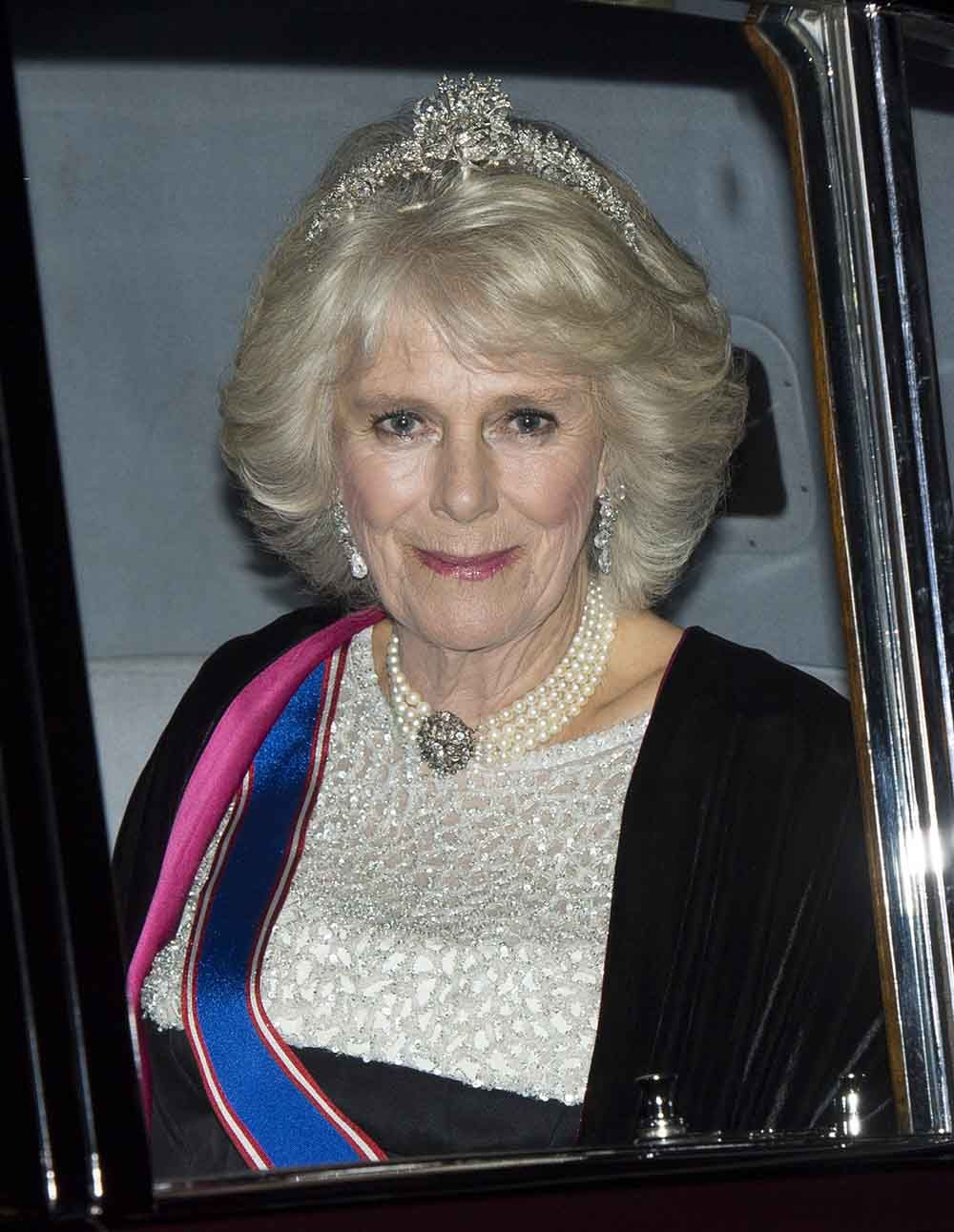 Rookie on Camilla duchess of cornwall, Duchess of