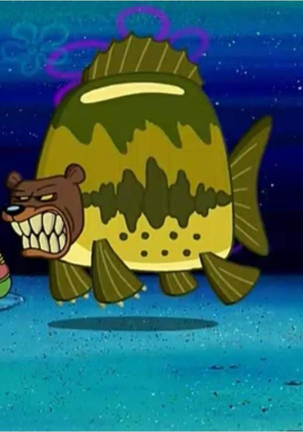 Sea Bear Things We Learned From Spongebob Squarepants Spongebob