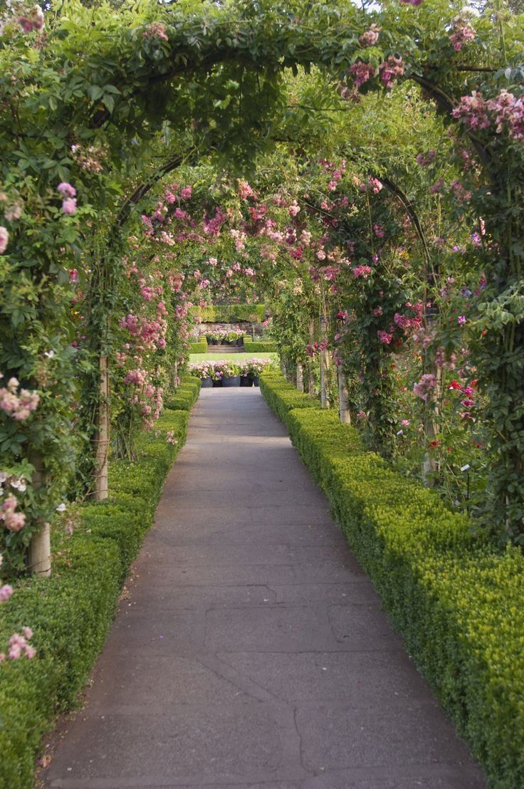 16 Free Garden Plans and Plant Lists You Can Use At Home is part of Rose garden Plans - Create a beautiful garden in any yard with our landscaping ideas, garden plans, and plant recommendations