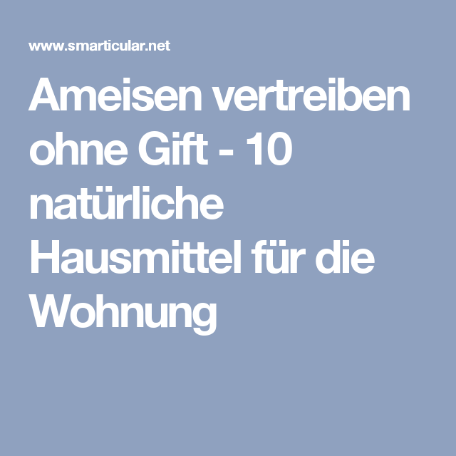 ameisen vertreiben ohne gift 10 nat rliche hausmittel f r die wohnung garten ants tips. Black Bedroom Furniture Sets. Home Design Ideas