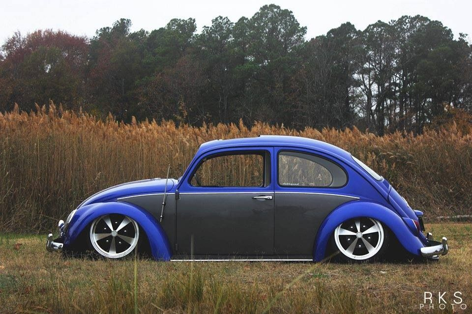 Vw Rides Vw Beetles Vw Cars Cars