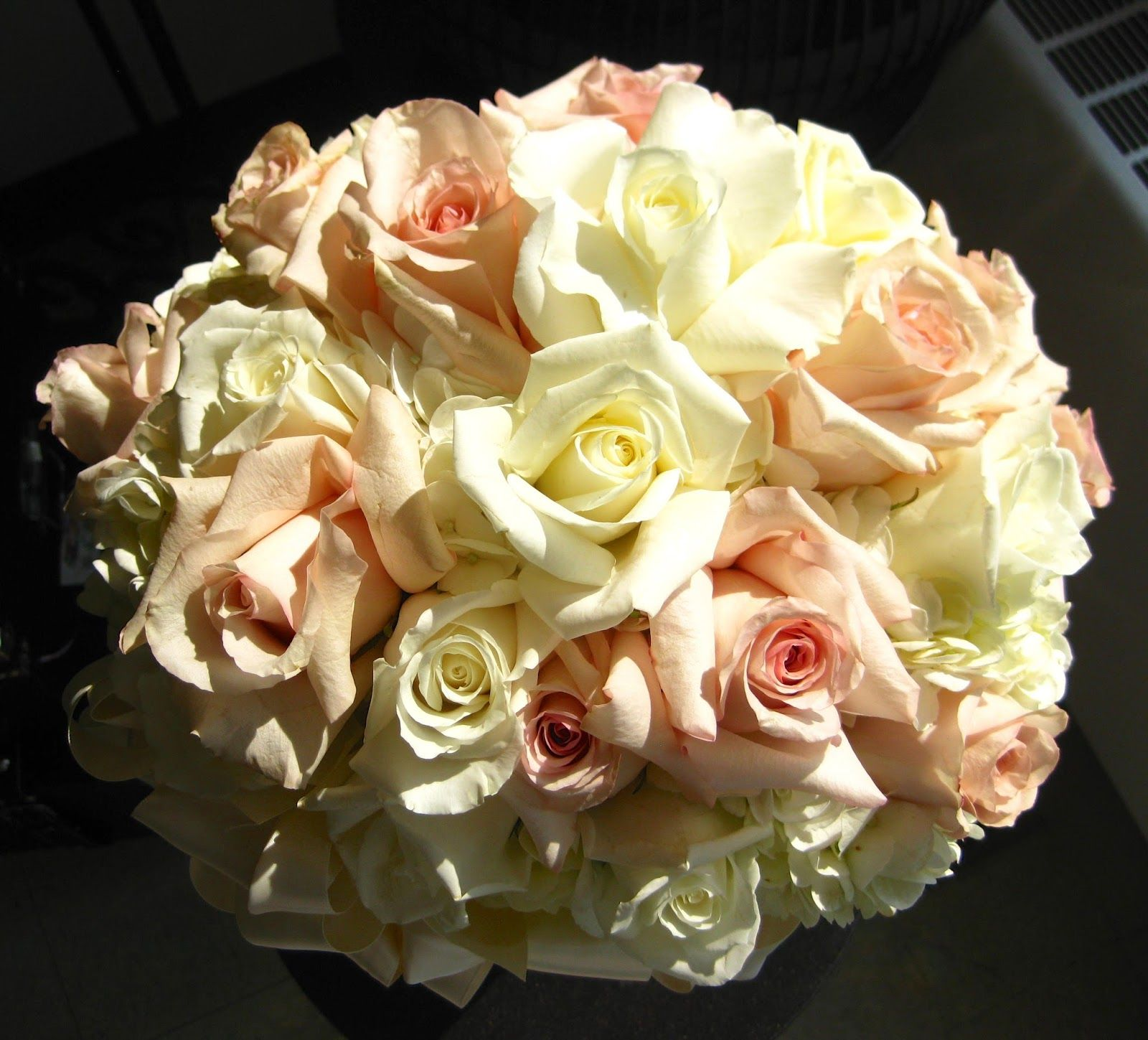 White Hydrangea Quicksand And Eskimo Roses Rose Flowers Hydrangea