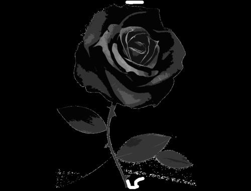Mis Imagenes Tatuajes De Flor Negra Rosas Negras Rosa Negra