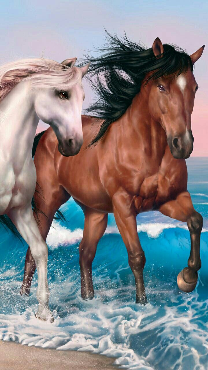 The Deof These Magnificent Horses Absolutley Gorgeous